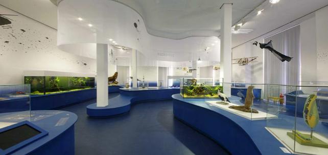ausstellung-naturkunde-museum-karlsruhe